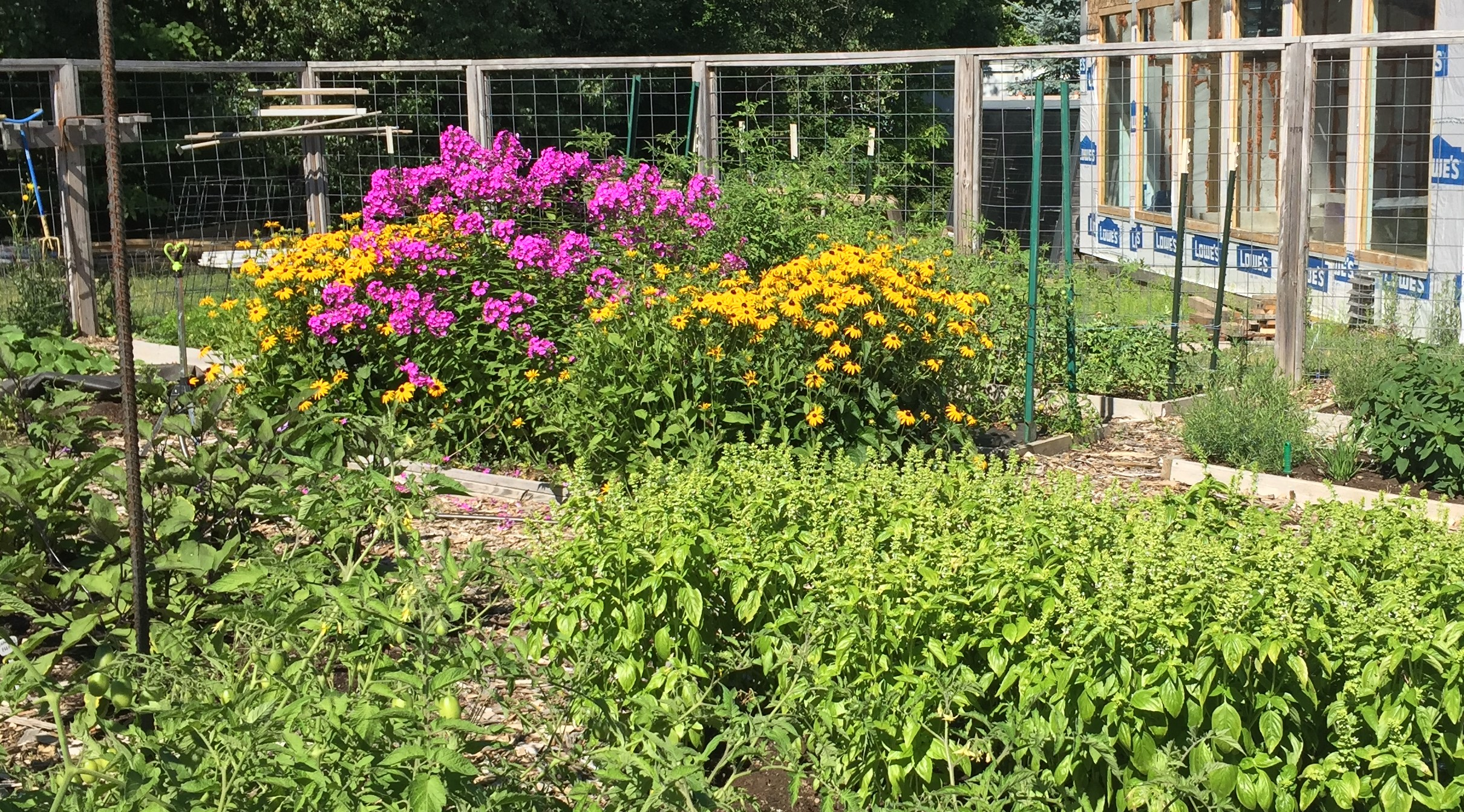Garden Time – Weds 12-1pm